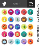 winter flat icons | Shutterstock .eps vector #1261021240