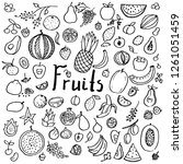 set of hand drawn doodle fruits.... | Shutterstock .eps vector #1261051459