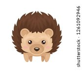cute hedgehog  sweet lovely...   Shutterstock .eps vector #1261092946
