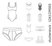 vector illustration of bikini... | Shutterstock .eps vector #1261159003