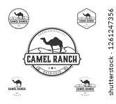 camel ranch logo vintage | Shutterstock .eps vector #1261247356