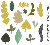 hand drawn leaf clipart with...   Shutterstock . vector #1261269823
