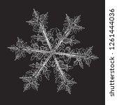 snowflake isolated on black... | Shutterstock .eps vector #1261444036