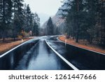 road in the autumn forest in... | Shutterstock . vector #1261447666