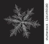 white snowflake isolated on... | Shutterstock .eps vector #1261450180