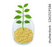 coins in jar with plant  ...   Shutterstock .eps vector #1261519186