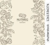 background with nutmeg  nut and ... | Shutterstock .eps vector #1261536376