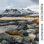 winter view to fjord   lofoten... | Shutterstock . vector #1261563826