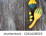 yellow and green gourds on a... | Shutterstock . vector #1261628023