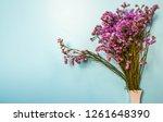 purple flower on light blue...   Shutterstock . vector #1261648390