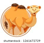 a camel on sticker template... | Shutterstock .eps vector #1261672729