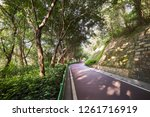 footpath in a public park | Shutterstock . vector #1261716919