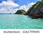 cockburn island landscape of... | Shutterstock . vector #1261759693