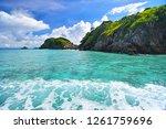 cockburn island landscape of... | Shutterstock . vector #1261759696