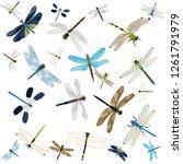 vector  isolated  flying... | Shutterstock .eps vector #1261791979