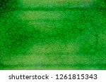 closeup green celadon ceramic... | Shutterstock . vector #1261815343
