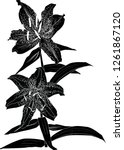 illustration with black lily... | Shutterstock .eps vector #1261867120