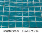 mesh is what is built into a... | Shutterstock . vector #1261875043