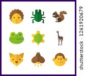 9 wildlife icon. vector... | Shutterstock .eps vector #1261920679