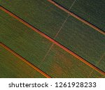 aerial top down view of the... | Shutterstock . vector #1261928233