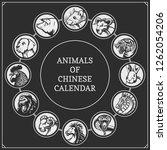 chinese years zodiac calendar... | Shutterstock .eps vector #1262054206