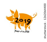 year of the pig 2019 hand drawn ...   Shutterstock .eps vector #1262064400