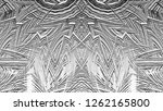 black and white relief convex...   Shutterstock . vector #1262165800