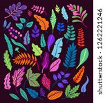 vector set of tropical leaves...   Shutterstock .eps vector #1262221246