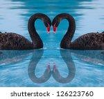 black swan | Shutterstock . vector #126223760