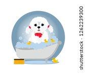 Stock vector an image of a cute lap dog taking a bath at grooming salon vector flat cartoon illustration 1262239300
