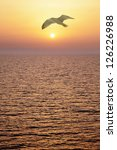 Seagull At Sunset. Vertical...