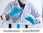 biochemistry laboratory... | Shutterstock . vector #1262282059