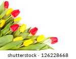 Bunch of fresh tulips isolated on white background - stock photo