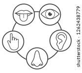 human senses icon. vector... | Shutterstock .eps vector #1262438779