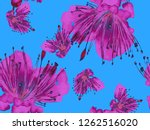bold floral print. large... | Shutterstock . vector #1262516020