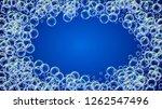 suds bubble. detergent bath... | Shutterstock .eps vector #1262547496
