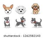 set of dogs concept  flat... | Shutterstock .eps vector #1262582143