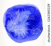 pisces hand drawn zodiac sign... | Shutterstock .eps vector #1262585239