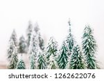 christmas pine tree in winter... | Shutterstock . vector #1262622076