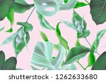 seamless tropical leaves... | Shutterstock . vector #1262633680