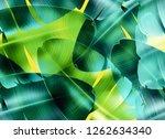 seamless tropical leaves...   Shutterstock . vector #1262634340