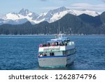 alaska  usa   july 14  2016  a... | Shutterstock . vector #1262874796