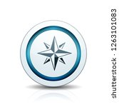 compass button illustration | Shutterstock .eps vector #1263101083