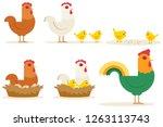 chicken vector cartoon chick...   Shutterstock .eps vector #1263113743
