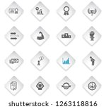 success flat rhombus web icons... | Shutterstock .eps vector #1263118816