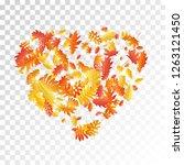 oak  maple  wild ash rowan... | Shutterstock .eps vector #1263121450