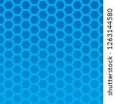 seamless hexagon pattern...   Shutterstock .eps vector #1263144580