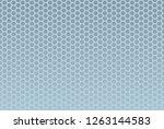 seamless hexagon pattern...   Shutterstock .eps vector #1263144583