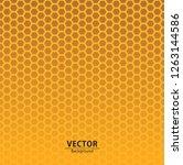 seamless hexagon pattern...   Shutterstock .eps vector #1263144586