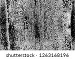 abstract background. monochrome ... | Shutterstock . vector #1263168196